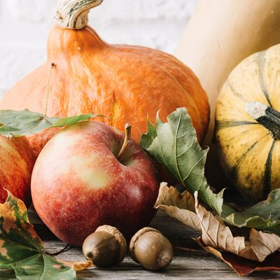 Celebrate Thanksgiving!